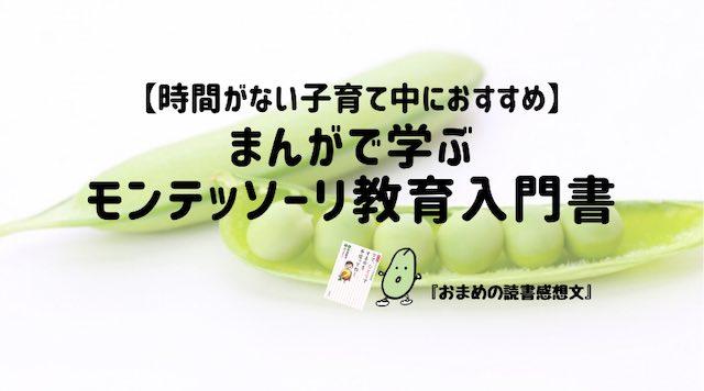 藤井聡太7段を育てた幼児教育『モンテッソーリ教育』のおすすめ入門書!まんがで楽しく学ぼう!